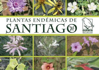 Plantas endémicas de Santiago de chiquitos