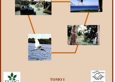 Plan de Desarrollo Municipal Puerto Suárez 2001-2005 Tomo I Diagnóstico
