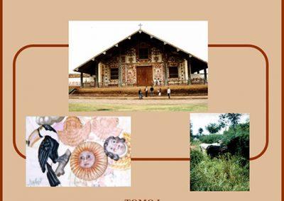 Plan de Desarrollo Municipal San Miguel de Velasco 2001-2005 Tomo I Diagnóstico