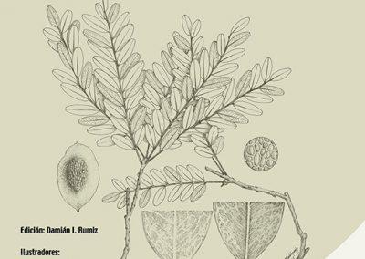 Guía de árboles y arbustos del Bosque Seco Chiquitano