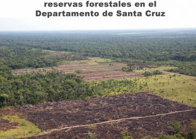 Problemática de las reservas forestales en el Departamento de Santa Cruz