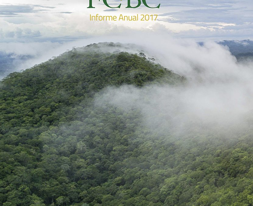 FCBC – Informe de Gestión 2017
