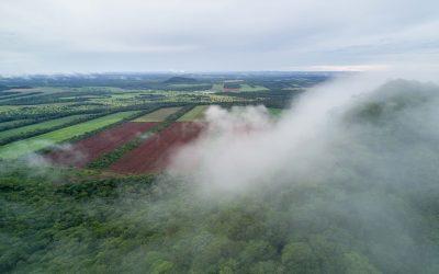 Lista Roja de Ecosistemas se aplica por primera vez en Bolivia