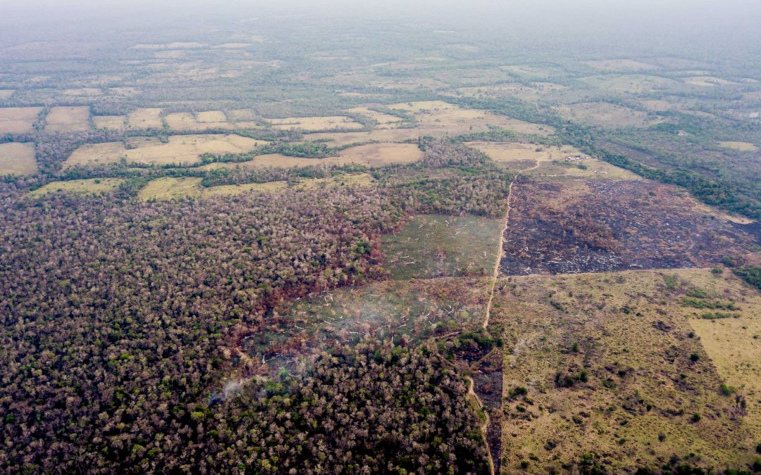 Ecosistemas chiquitanos en peligro