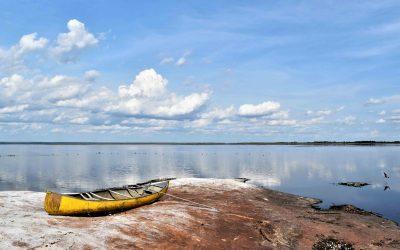 Laguna Marfil, agua, gente y biodiversidad