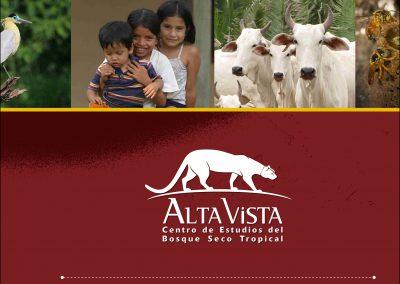 Memoria Alta Vista 2010
