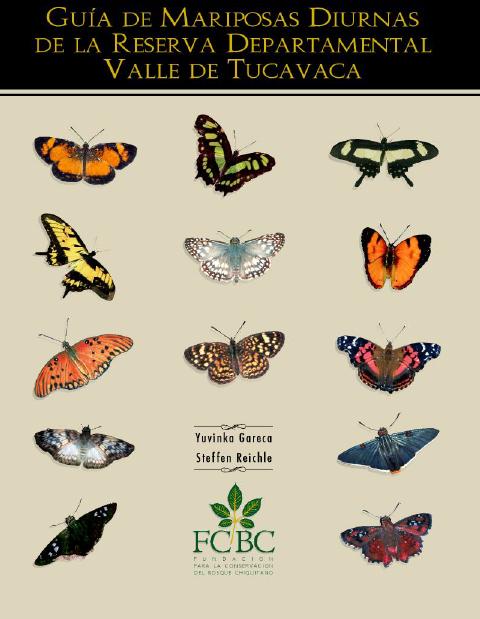 Guía de mariposas diurnas en la Reserva Valle de Tucabaca
