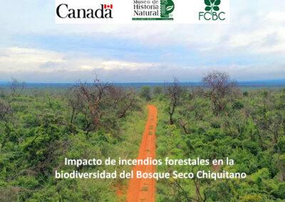 Impacto de incendios forestales en la biodiversidad del Bosque Seco Chiquitano