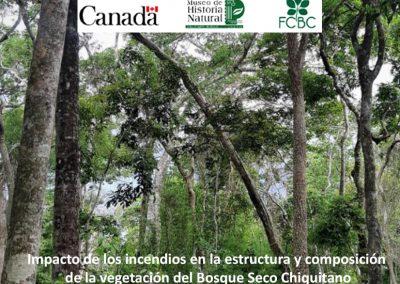 Impacto de los incendios en la estructura y composición de la vegetación del Bosque Seco Chiquitano