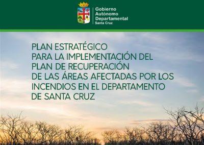 Plan estratégico para implementación del Plan de Recuperación de las áreas afectadas por los incendios en el departamento de Santa Cruz