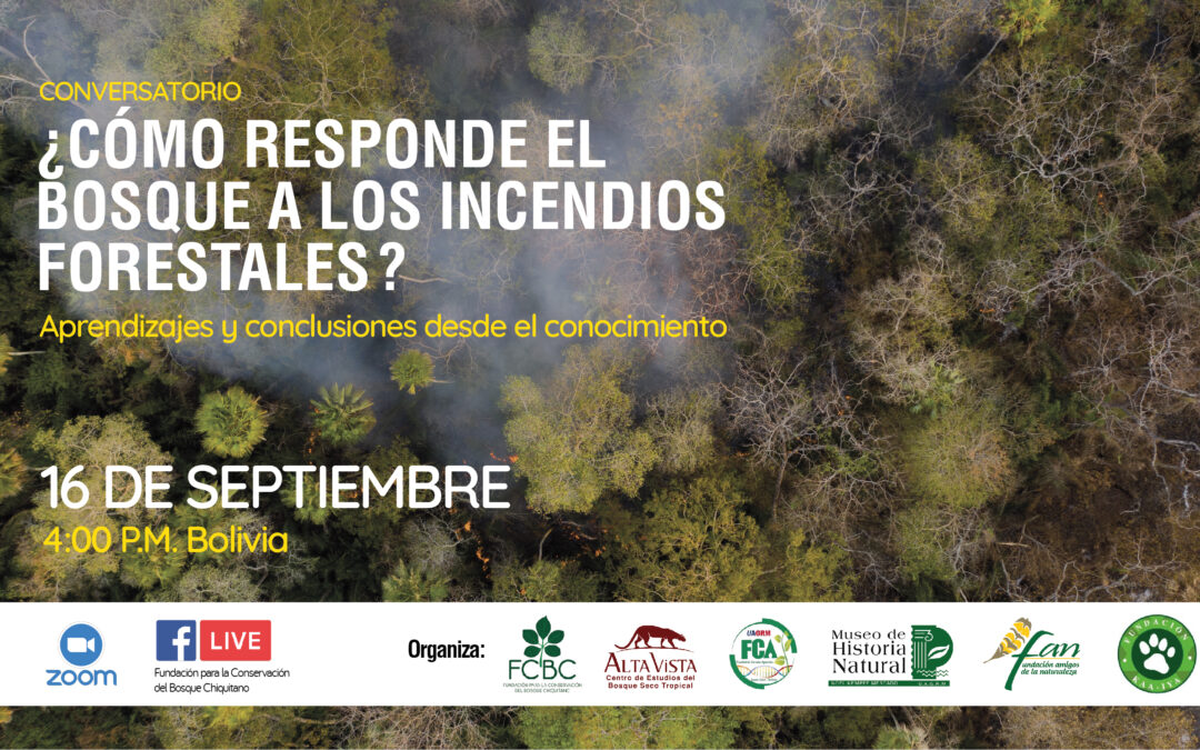 Conversatorio: ¿Cómo responde el bosque a los incendios forestales?